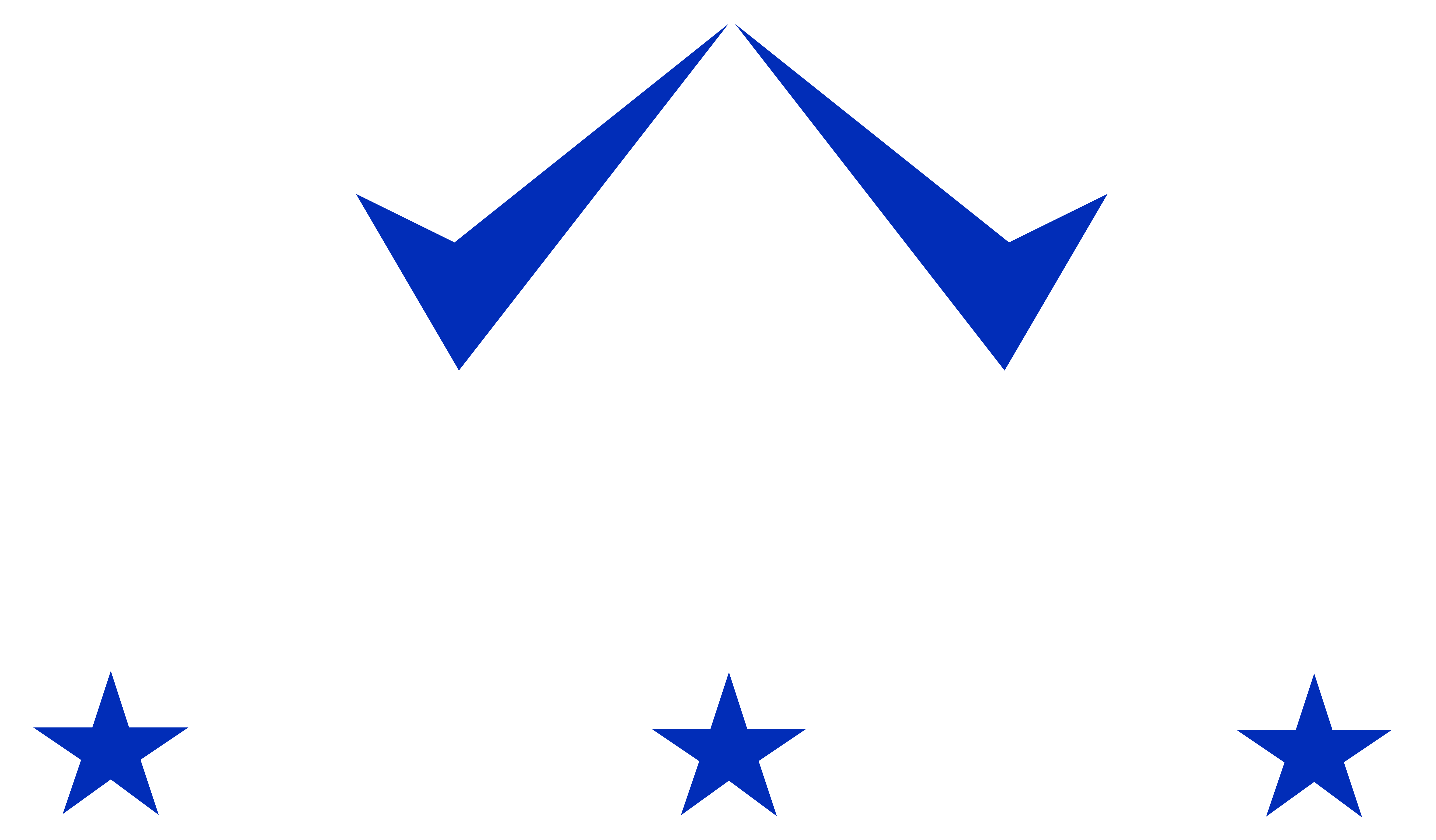 Beveiligings Service Texel